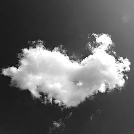 Brenda Conrad - Fragile Heart
