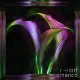 Shirley Mangini - Framed Lavender Calla Lilies