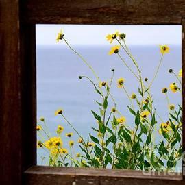 Johanne Peale - Framed Sunflowers