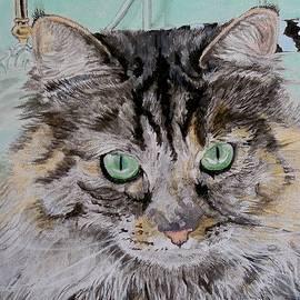Yvonne Carter - Fran the Cat
