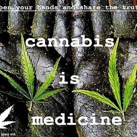 Sue Rosen - Free the Weed