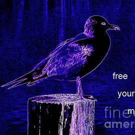 Ed Weidman - Free Your Mind