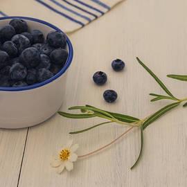 Kim Hojnacki - Fresh Blueberries