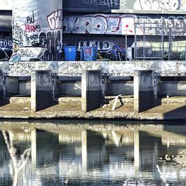 Kevin Duke - Frisco  Graffiti
