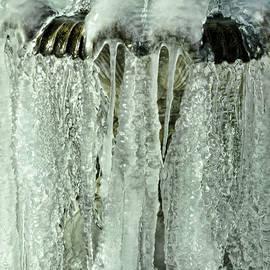 Glenn Grossman - Frozen