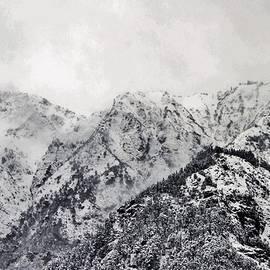 Kim Bemis - Frozen in the Mountains