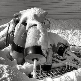 Frozen Lobster Trap Buoys in Snow - Olivier Le Queinec