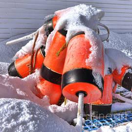Olivier Le Queinec - Frozen Lobster Trap Buoys in Winter