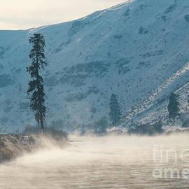 Mike Dawson - Frozen Mist Rising