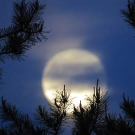 H B Vesseur - Full Moon