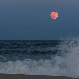 Terry DeLuco - Full Moon Splash Seaside NJ