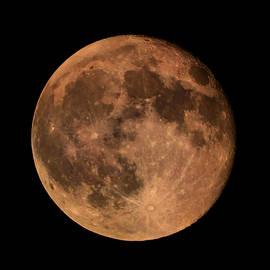 Lilia D - Full Red moon