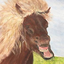 Anne Sands - Funny Iceland Horse