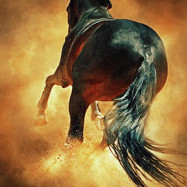 Dimitar Hristov - Galloping horse in fire dust