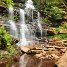 Lori Deiter - Ganoga Falls Ricketts Glen