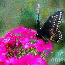 Tina  LeCour - Garden Butterfly