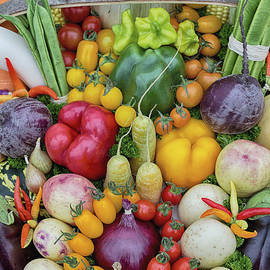 Garden Produce - Tim Gainey