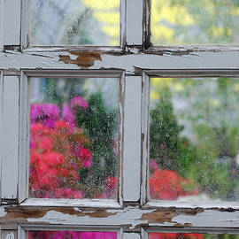 Nancy Mueller - Garden View Through Weathered Door