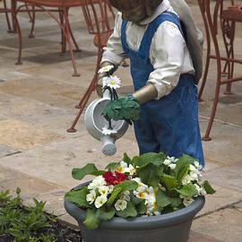 Sally Weigand - Gardening Helper