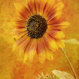 Jordan Blackstone - Gathering Together - Autumn Art