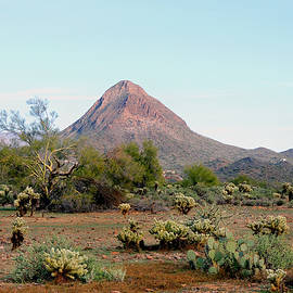 Gordon Beck - Gavilan Peak, Arizona