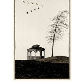 Mike Nellums - Gazebo and Geese poster