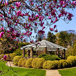 Geraldine Scull   - Gazebo at Deep Cut Gardens in Middletown NJ