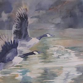 Keith Thompson - Geese Taking Flight