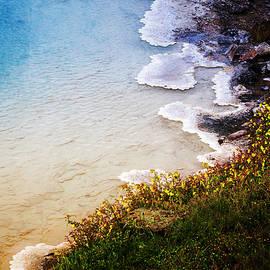 Nancy Forehand - Geothermal Beach