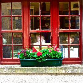 Stephanie Moore - Gift Shop Window