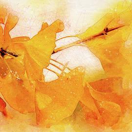 Terry Davis - Ginkgo Abstraction