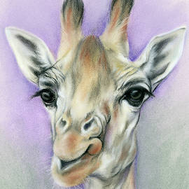 MM Anderson - Giraffe with Beautiful Eyes