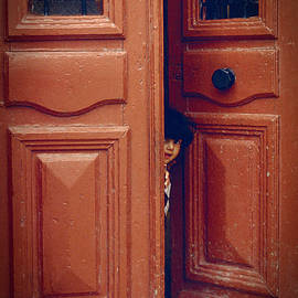 Jon Delorme - Girl in a Doorway