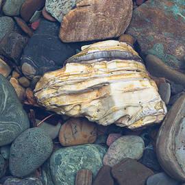 Glacier Park Creek Stones Submerged