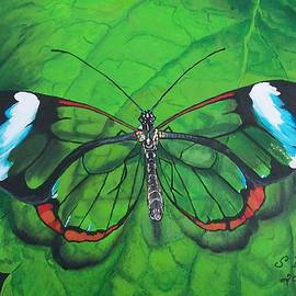 Sharon Duguay - Glass Wing Butterfly