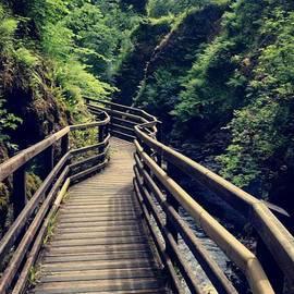 Athin Alias - Glenariff Forest Park