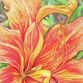 Carla Parris - Glorious Daylily
