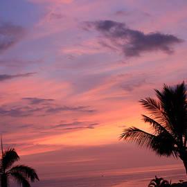 Karen Nicholson - Glorious Sunset
