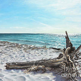 Joe Mandrick - Gnarled Drift Wood