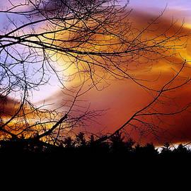 Mike Breau - Godzilla Sunset