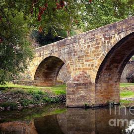 Carlos Caetano - Gois Bridge
