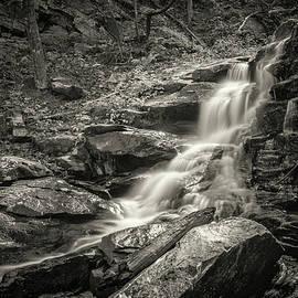 Chris Brunson - Gold Mine Creek Falls