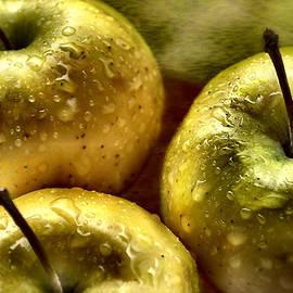 Sheri Nye - Golden Apples