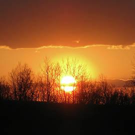 Debra     Vatalaro - Golden Arch Sunset