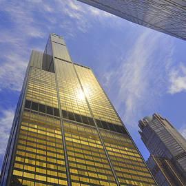 Daniel Ness - Golden Chicago