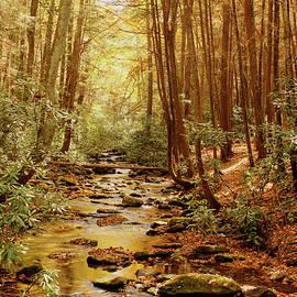 Lorraine Baum - Golden Creek