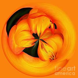 Kaye Menner - Golden Floral Spherical Art by Kaye Menner