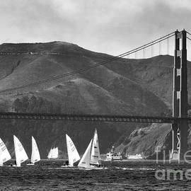 Scott Cameron - Golden Gate Seascape