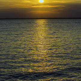 Brian Wallace - Golden Horizon