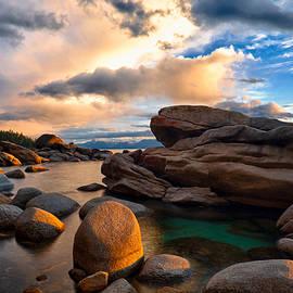 Renee Sullivan - Golden Light on Nature